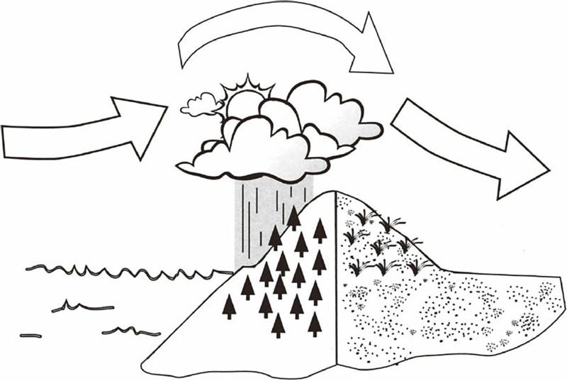 大气在翻越山脉时,其中的水分会渐渐消失,这样就形成了雨影沙漠