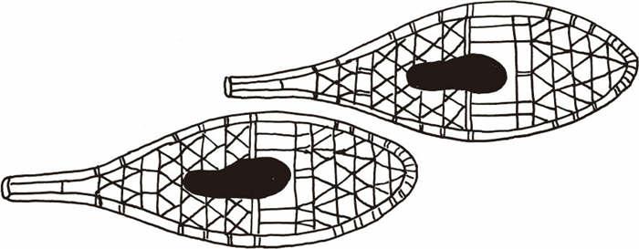 河狸尾式雪鞋