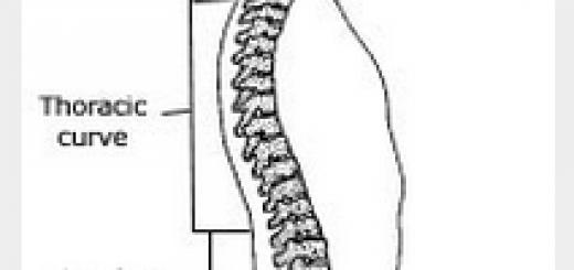 脊柱的3个生理弯曲,分别是颈曲(位于颈部底部即从寰椎至隆椎的脊柱前突)、胸曲(位于背部中间即从第1胸椎至第12胸椎的脊柱后突)和腰曲(位于腰部底下即从第1腰椎至第5腰椎的脊柱前突)。