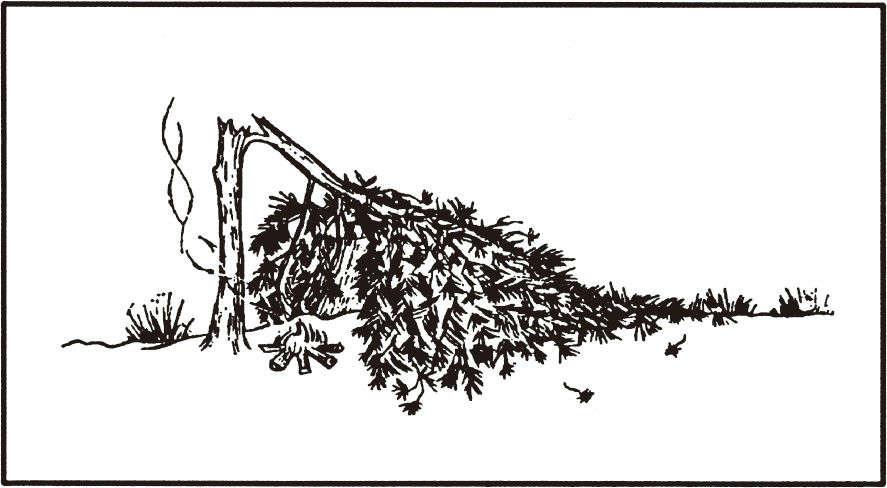 使用倒地的树作为掩体