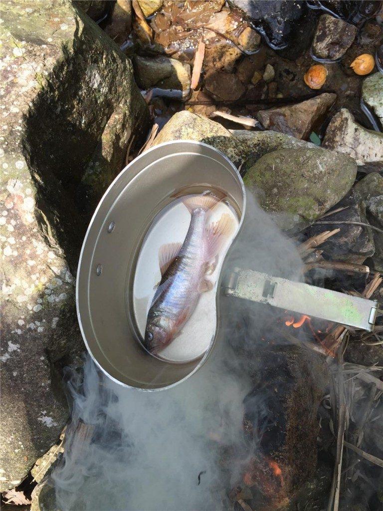 野外生存煮鱼
