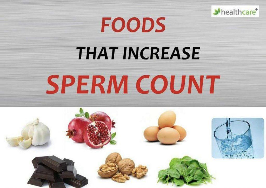 增加精子数量的食物