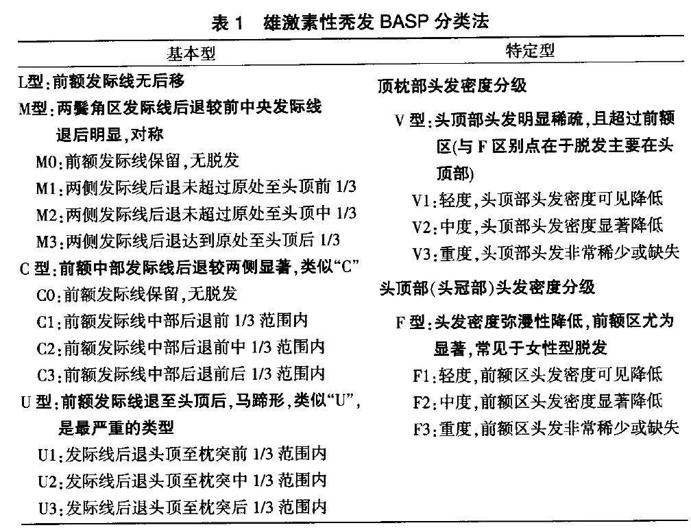 雄激素性脱发BASP分类法