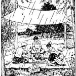 将一块帆布系在树之间,就能够为下雨天野餐提供一块避雨处。